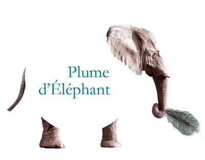 bouton-elephant